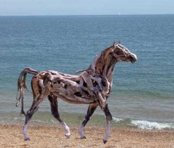 Heather Jansch - untitled
